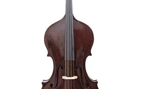 Giacomo Rivolta double bass