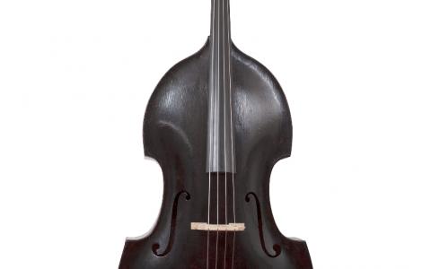 Matthias Thir double bass